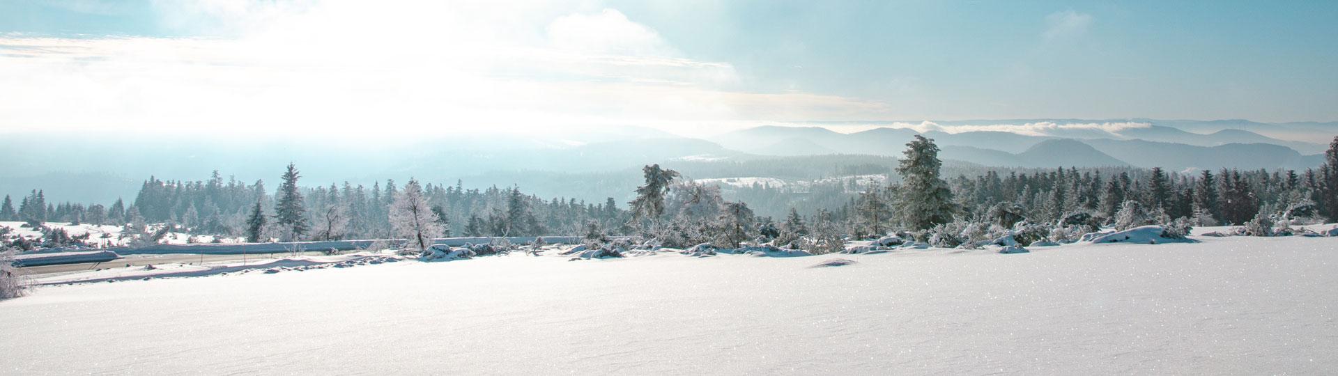 verschneites Schwarzwaldpanorama